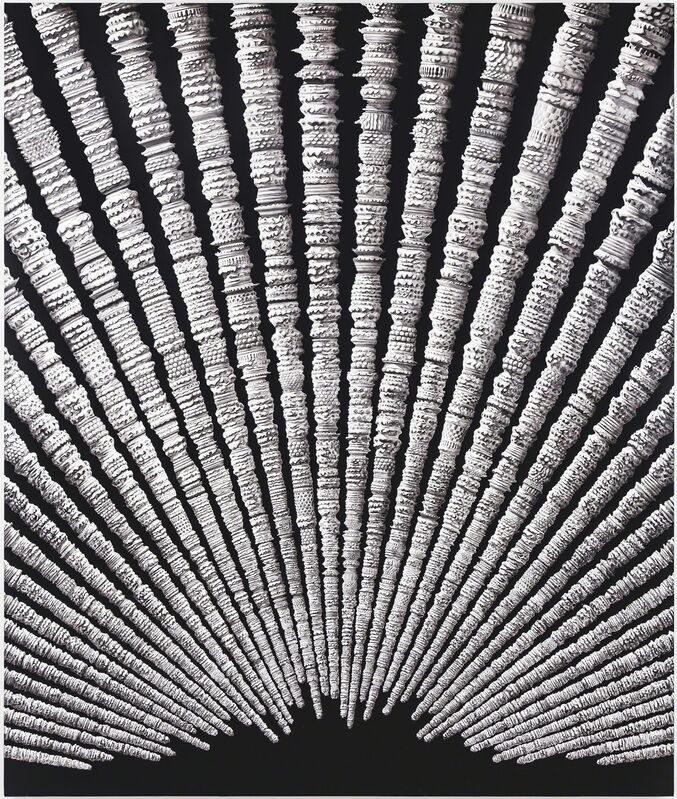 Erol Eskici, 'Zamanın Tortuları / Residiues of Time ', 2015, Painting, Acyrilic on canvas, Sanatorium