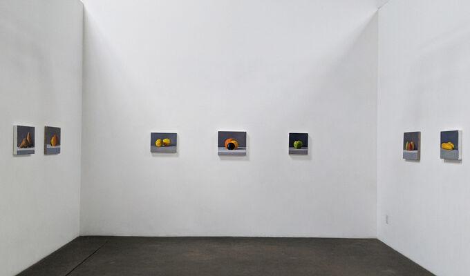 Still Lifes, installation view