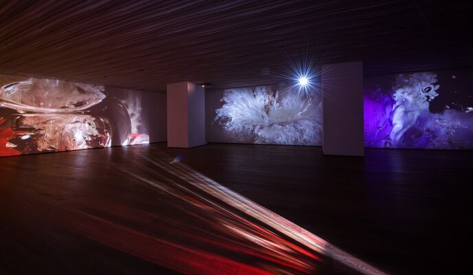 Naoko Tosa: Invisible Beauty, installation view