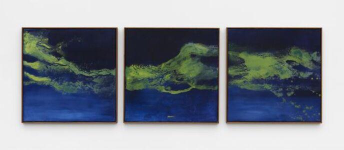 Thiago Rocha  Pitta, 'landscape with cyanobacteria', 2018