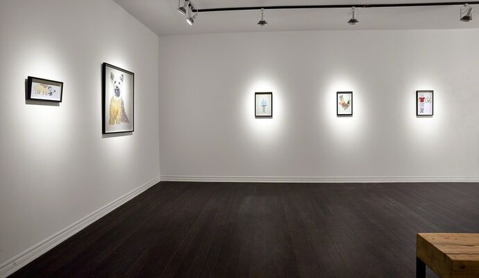 Andrés & Valentina Layos | Growing together, installation view