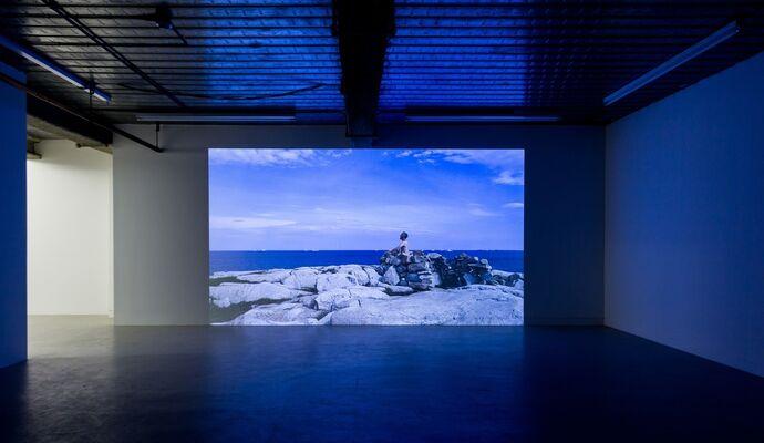 Marcus Coates - The Last of Its Kind, installation view