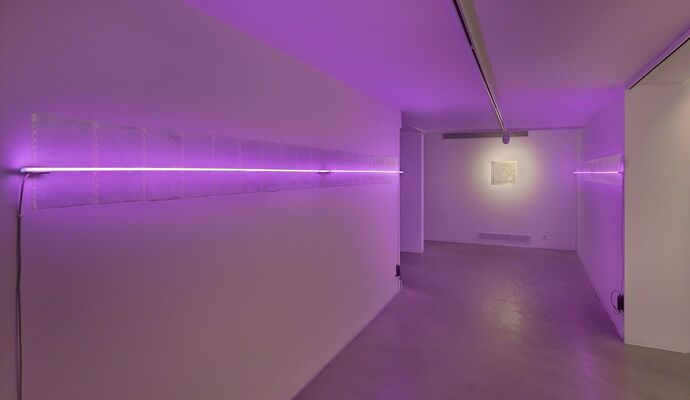 The Dormant Colony, installation view