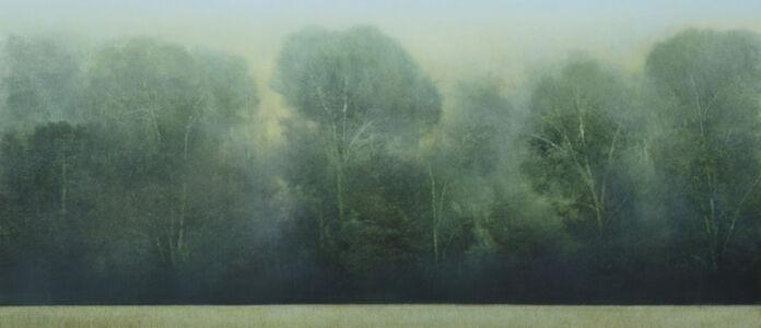 Peter Brooke, 'Meadow Slice', 2018