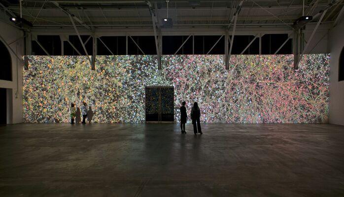 Jennifer Steinkamp: Madame Curie, installation view