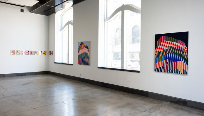 Paint Piles   Natalie Lanese, installation view