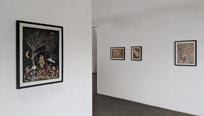 An Attractive New Sense, installation view