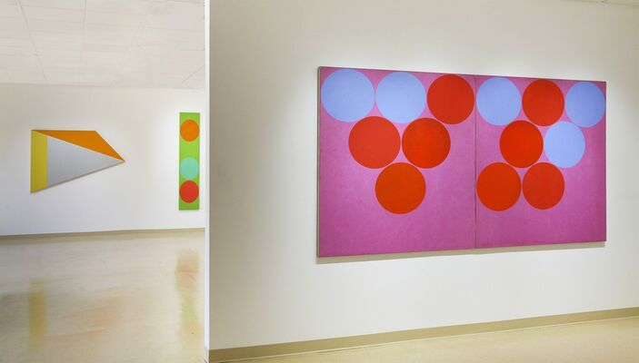 Color:  Stained, Brushed and Poured, installation view