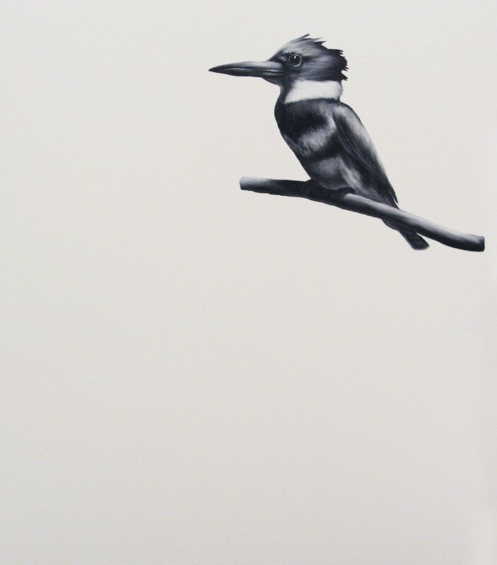 Shelley Reed, 'Belted Kingfisher', 2018, Painting, Oil on paper, Visions West Contemporary