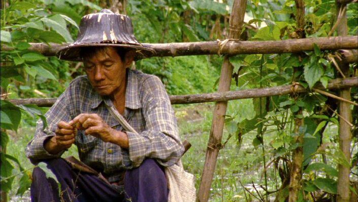 Judea with Arin Rungjang, Lee Kit, Pratchaya Phinthong, Maria Taniguchi, Rirkrit Tiravanija and Nguyễn Trinh Thi, installation view