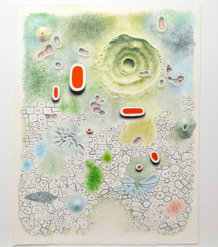 Alexander Ross, 'Untitled', 2013, Drawing, Collage or other Work on Paper, Color pencil, flashe, and graphite on paper, David Nolan Gallery