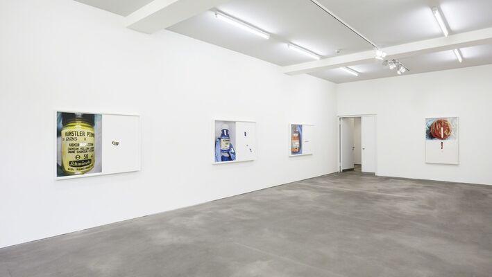 Pigmente, installation view