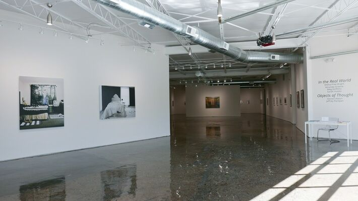 In The Real World, installation view