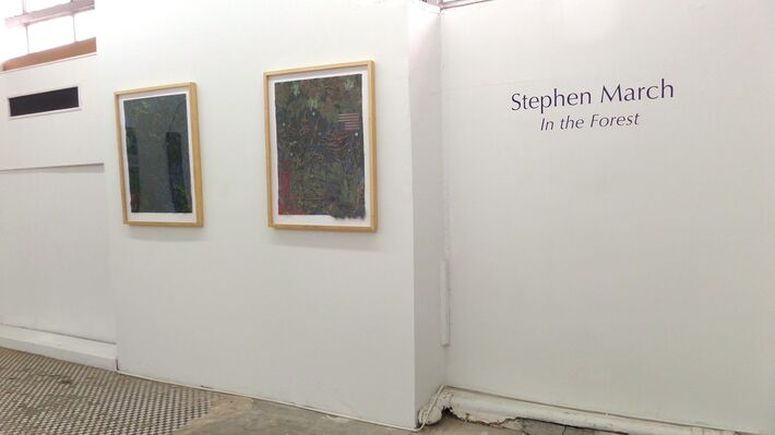 Stephen March: In the Forest, installation view