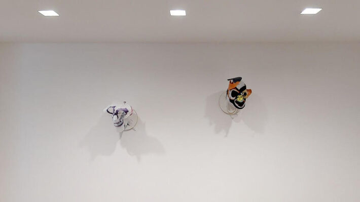 The Three Princes of Serendip, installation view