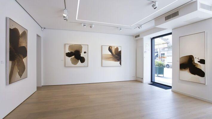 Mao Lizi, Beyond color, installation view