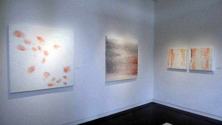Suzanne Hazlett - Southern Exposure, installation view