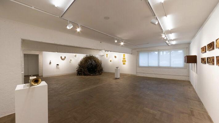 Organism, installation view