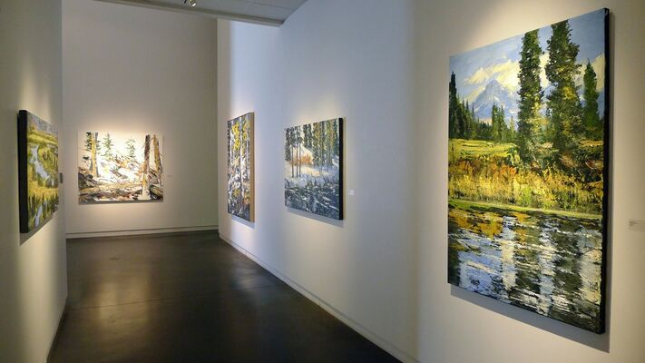 James Cook   Inside Out, installation view