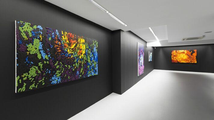 Cenk Akaltun - Ostensible, installation view