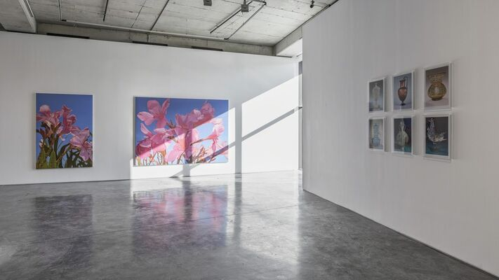 Mustafa Hulusi - Negative Ecstasy, installation view