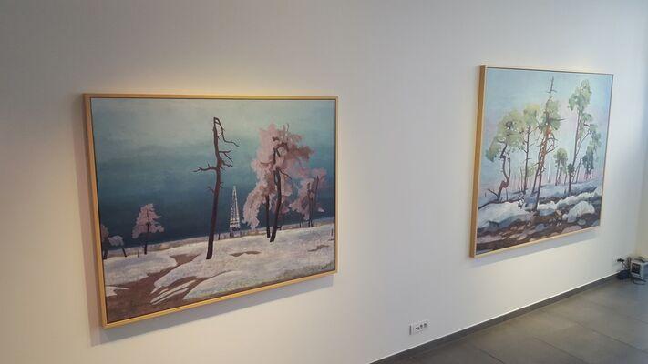 Hans Vandekerckhove 'Do Trees Have Dreams?', installation view