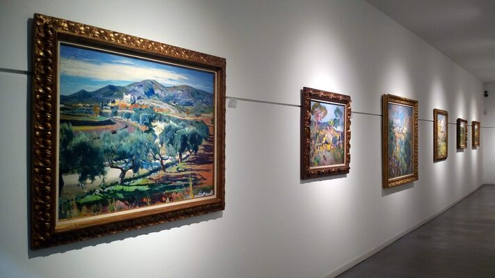 Joaquim Mir. Nature and color, installation view