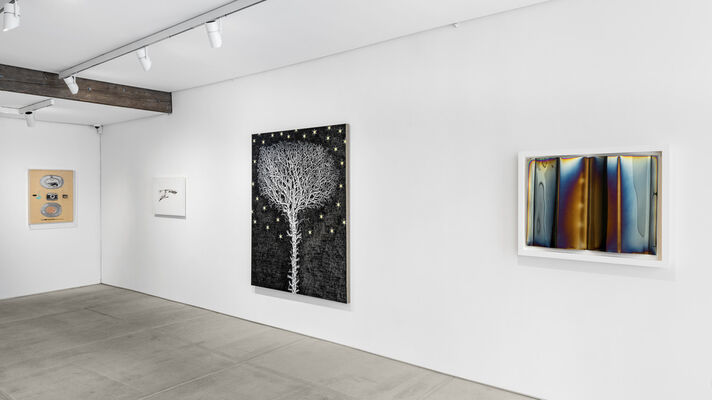 THE SHADOW, installation view