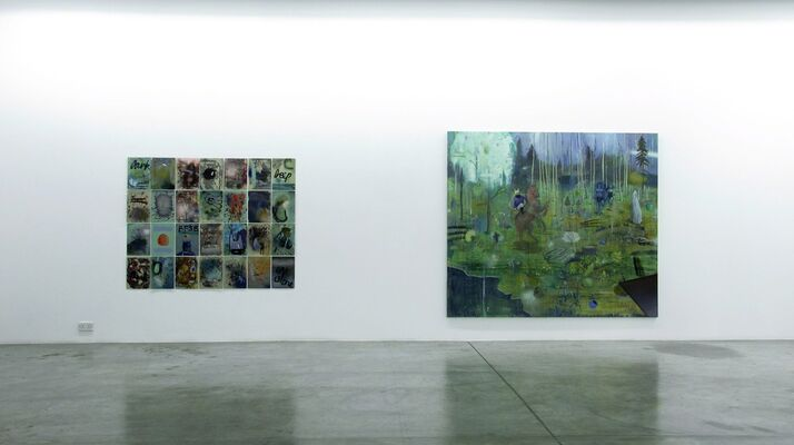 Dreams in Blue. The Year Philip Mueller Didn't Wake Up., installation view