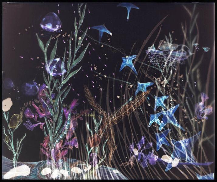 Christine Nguyen, 'Rockweeds And The Blue Skates Escape', 2009