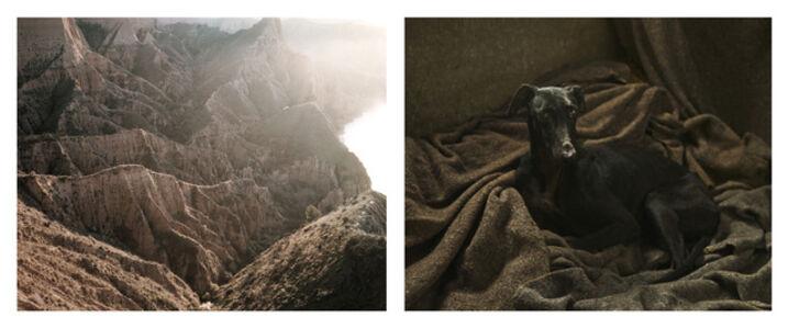 Martin Usborne, 'Ravine & Galgo', 2015