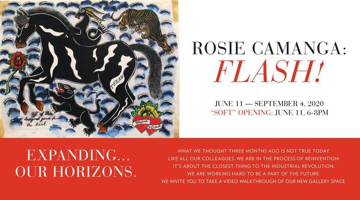 ROSIE CAMANGA: FLASH!, installation view