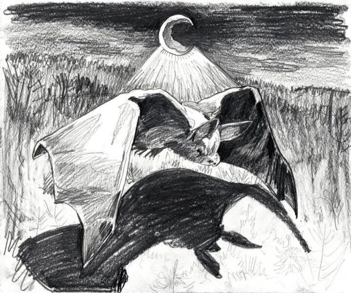 Emma Webster, 'Moon Bat', 2020