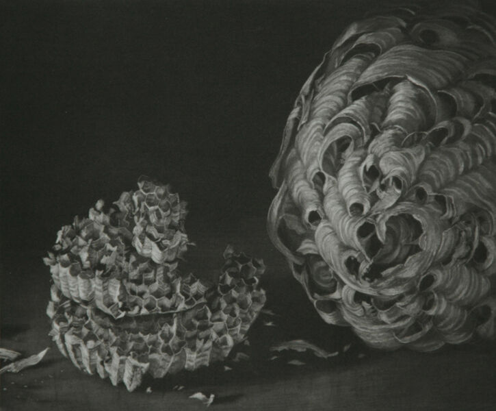 Judith Rothchild, 'Nid de Frelons', 2014