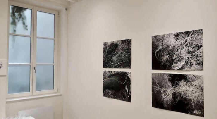 Liliana Gassiot & Odilon Redon, installation view