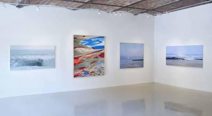 Water Scenes: Chris Armstrong, John Evans, Todd Kenyon, and Eric Zener, installation view