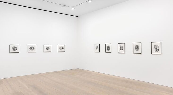 R. Crumb Art & Beauty, installation view