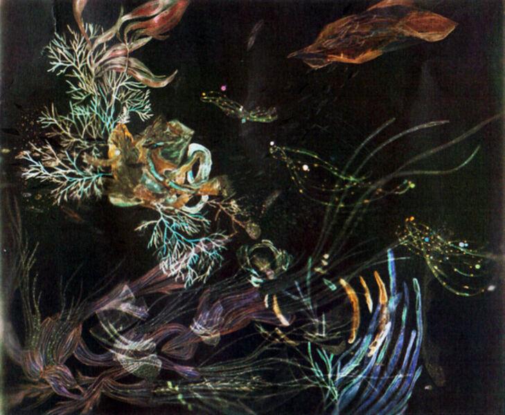 Christine Nguyen, 'Dark Matter Debris', 2009