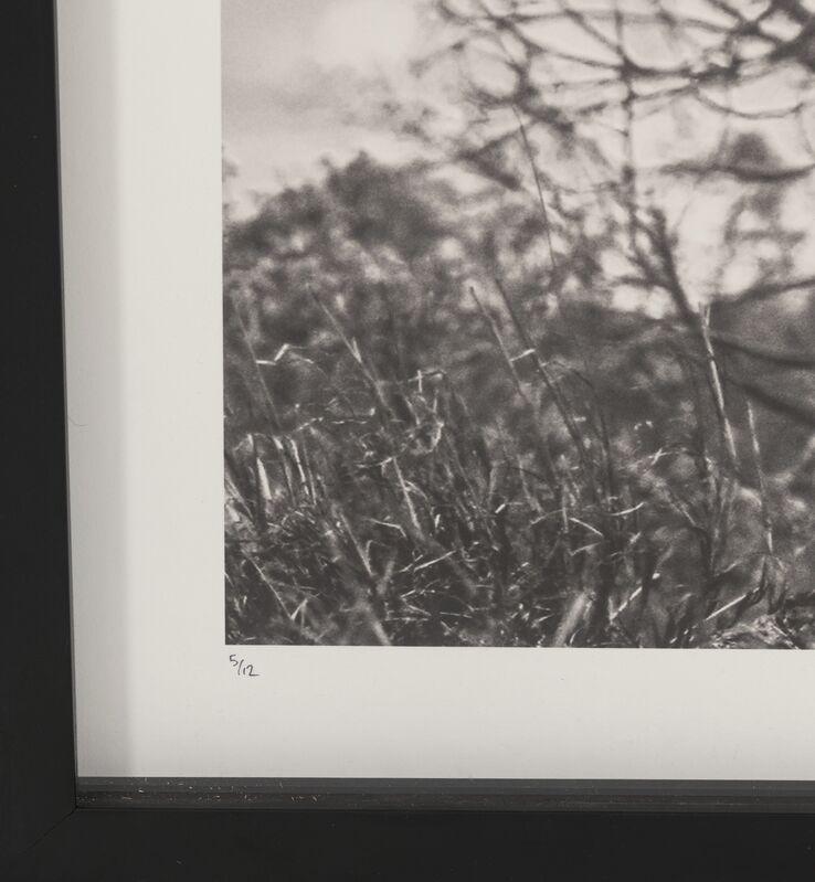 David Yarrow, 'Tsavo East', 2016, Photography, Digital pigment, Heritage Auctions