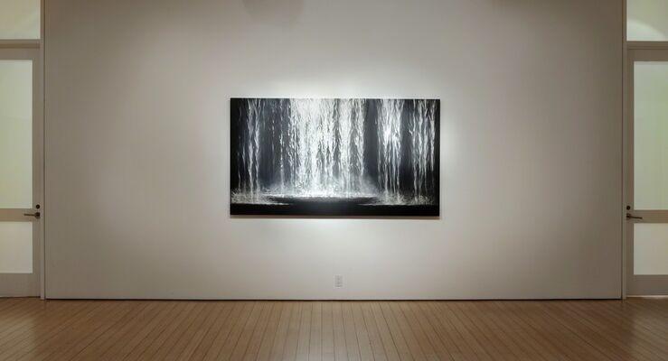 Mitchell Lonas: Convergence, installation view