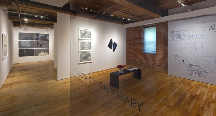 Soledad Salamé: Are You Listening?, installation view