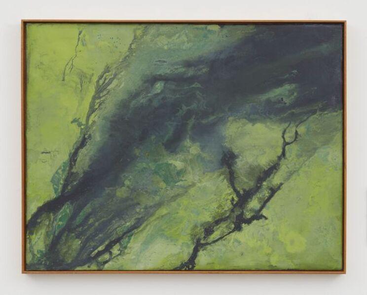 Thiago Rocha  Pitta, 'seascape with cyanobacteria', 2017