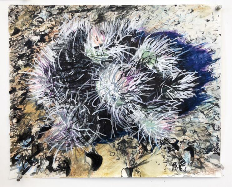 Eric LoPresti, 'Cacti as sea anemones', 2018