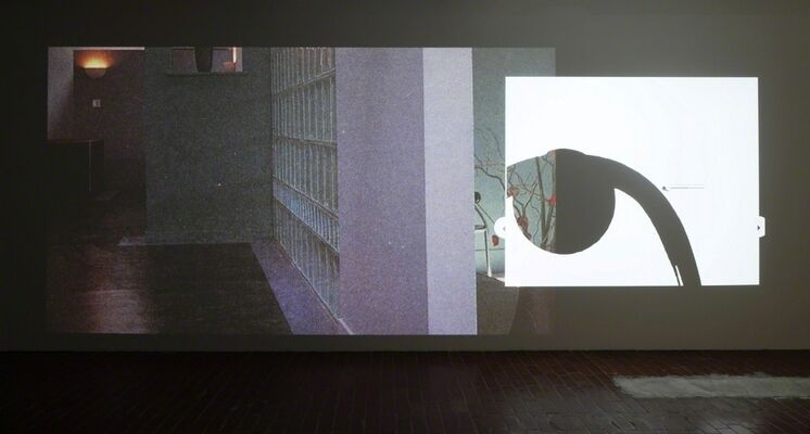 FEELS EVERYTHING LIKE SHOPPING, installation view