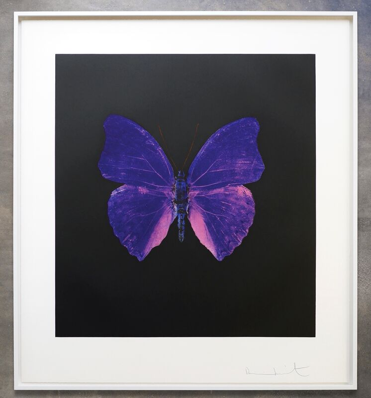 Damien Hirst, 'The Souls On Jacobs Ladder Take Their Flight', 2007, Print, Colour photogravure etchings on 400 gsm Velin Arches paper, Joseph Fine Art LONDON