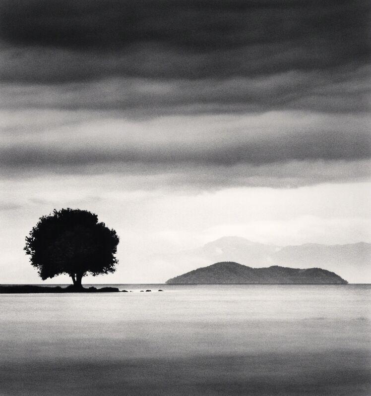 Michael Kenna, 'Biwa Lake Tree, Study 4 - Omi, Honhsu, Japan.', 2003, Photography, Sepia toned silver gelatin print, Galeria de Babel