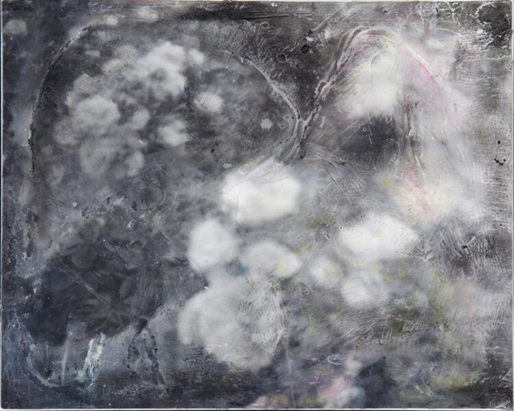 Lisea Lyons, '19127 ', 2017