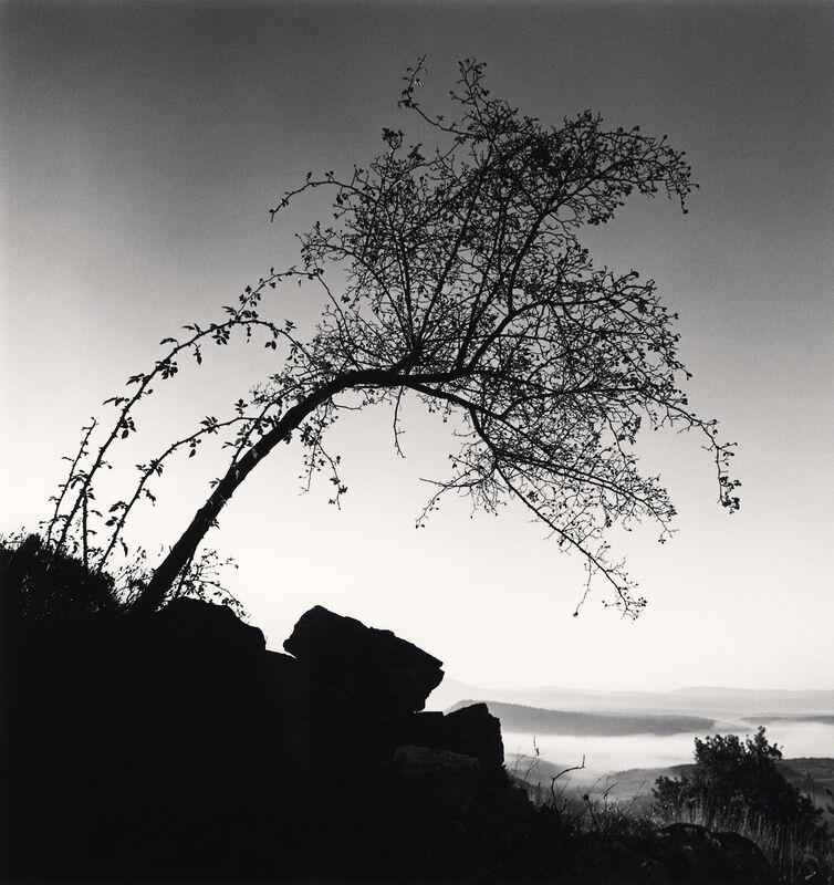 Michael Kenna, 'l'Églantier - Bargème, France.', 1997, Photography, Sepia toned silver gelatin print, Galeria de Babel
