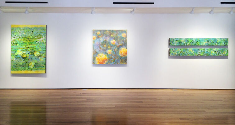 Betsy Stewart: Microscopic Cosmos, installation view