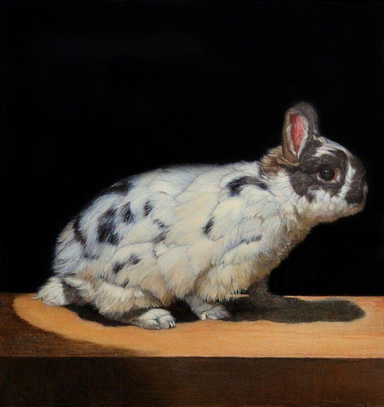Patricia Traub, 'Netherland Dwarf Rabbit #1', 2013, Painting, Oil on Woodpanel, Gallery Henoch